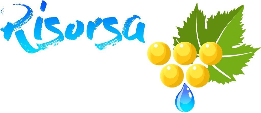 Logo Progetto Risorsa senza partner